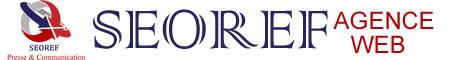 Agence Webmarketing Paris: Expert en référencement naturel